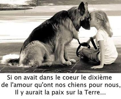Vign_chien_amour_5