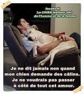 Vign_chien_amour_7