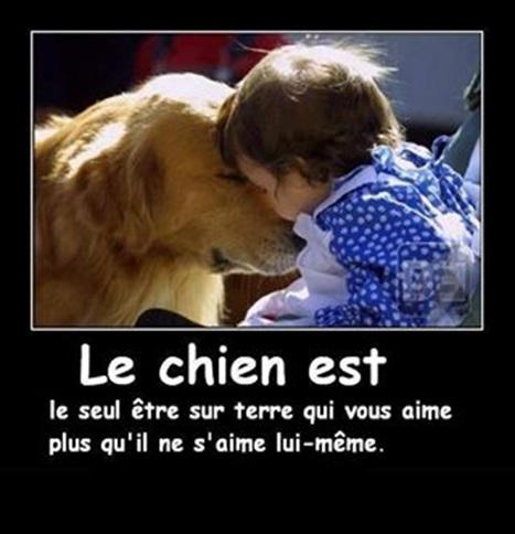 Vign_chien_amour
