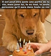 Vign_chien_anniversaire