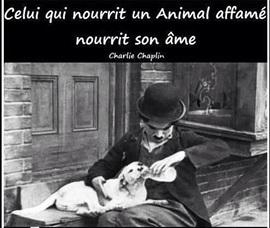 Vign_chien_et_ame