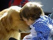 Vign_chien_et_bb
