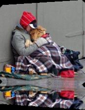 Vign_chien_et_sans_abris
