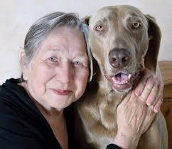 vign_chien_et_pers_age_2